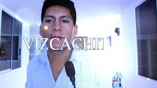 PUMITA CAZADOR - VIZCACHITA COVER