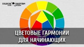 Цветовые гармонии для начинающих. Уроки Фотошопа