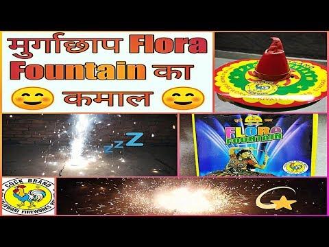 Cockbrand  Flora Fountain Cracker 2018 !!!!