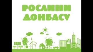 Рослини Донбасу - презентація