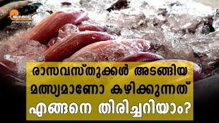 Chemical Laced Fish in Kerala   Aanakkaryam   Malayalam Health News  