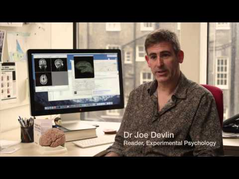 UCL Psychology: aligning research with practice