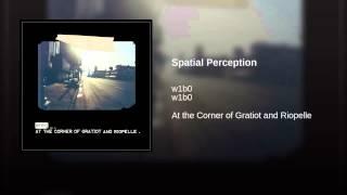 Spatial Perception