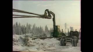 ОАО ''Луковецкий ЛПХ'' и ОАО ''Светлозерсклес''. Архангельская область, 2001г.
