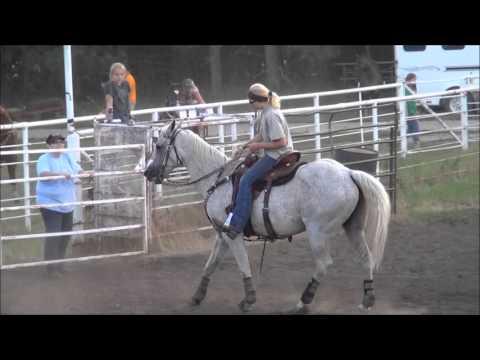 McHenry County Saddle Club ND04 Jackpot Barrel Racing Aug 13, 2013