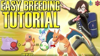How to Breed Pokemon FULL GUIDE - Perfect IV Competitive Tutorial (Sword and Shield)