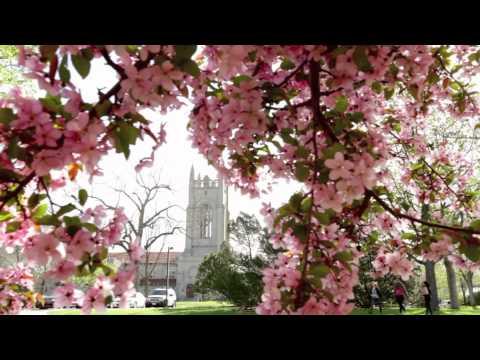 Spring at Carleton College