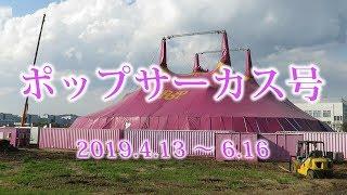 湘南モノレール・ポップサーカス号運行中(Shonan Monorail)