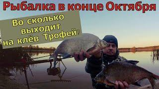 Рыбалка на Фидер в конце октября 2021 Стемнело и тут фидер начал Ловля на фидер осенью Ловля леща