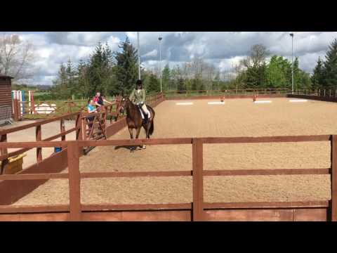 Intro B Dressage test 14/05/17 (test read out)