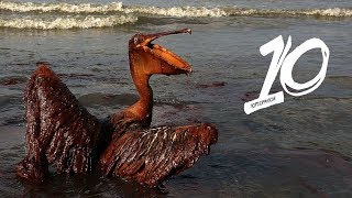 Największe wycieki ropy na świecie!