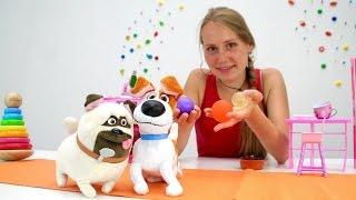 Тайная жизнь домашних животных: Макс играет дома