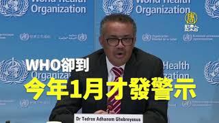 陳建仁:世衛需檢討用人!全球疫情應觀察到5月底