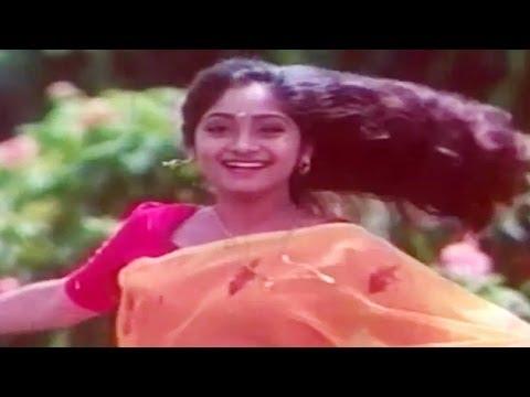 Pavizhamanchalil   Vakkil Vasudev   Malayalam Film Song