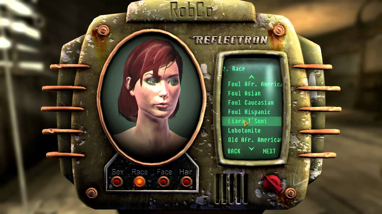How To Build Character Fallout