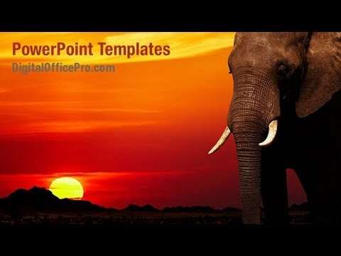 Elephant Head PowerPoint Template Backgrounds DigitalOfficePro