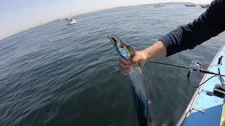 撮りためたタチウオ釣り動画から、ヒット~取り込みの瞬間を集めてみました。at久里浜港 ムツ六丸.
