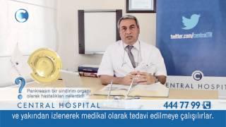 pankreasın bir sindirim organı olarak hastalıkları nelerdir prof dr mehmet rafet yiğitbaşı