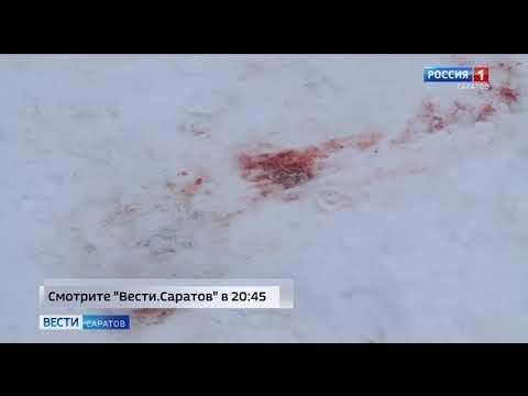"""Анонс программы """"Вести. Саратов"""" в 20:45 от 20 января 2020"""