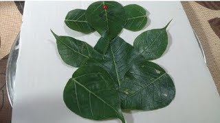 Peepal leaf ganesha:How to make ganesha with leaves:Eco friendly ganesha:ganesha with natural things