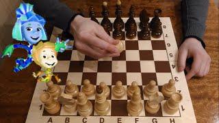 Шахматы. Урок 1 для начинающих. Игра шахматы, шахматная доска, шахматные фигуры, шахматная нотация