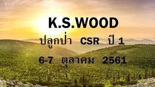 K.S. WOOD ปลูกป่า CSR ปี 1