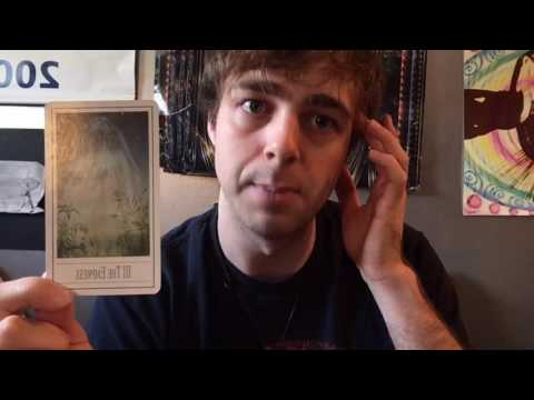 Daily 906 Tarot Card Reading - The Empress
