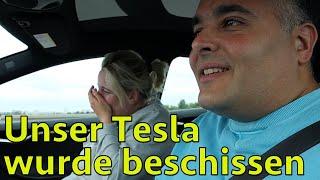 Vlog Tesla Roadtrip nach Berlin - EKELHAFT: Vogel scheißt in unser Model S