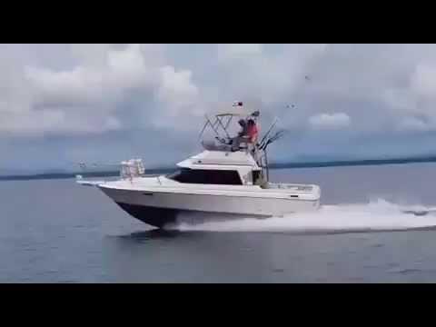 Bayliner 2556 First Test (Yanmar 315hp Turbodiesel) - Victor IV