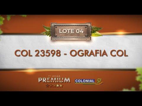 LOTE 04   COL 23598