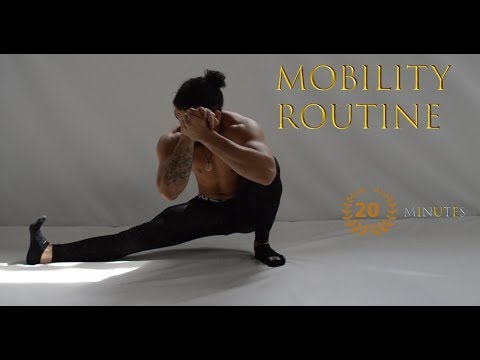 Daily Mobility Routine l Increase Flexibility l Injury Prevention