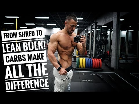 FROM SHRED TO LEAN BULK | Carbs make all the difference!
