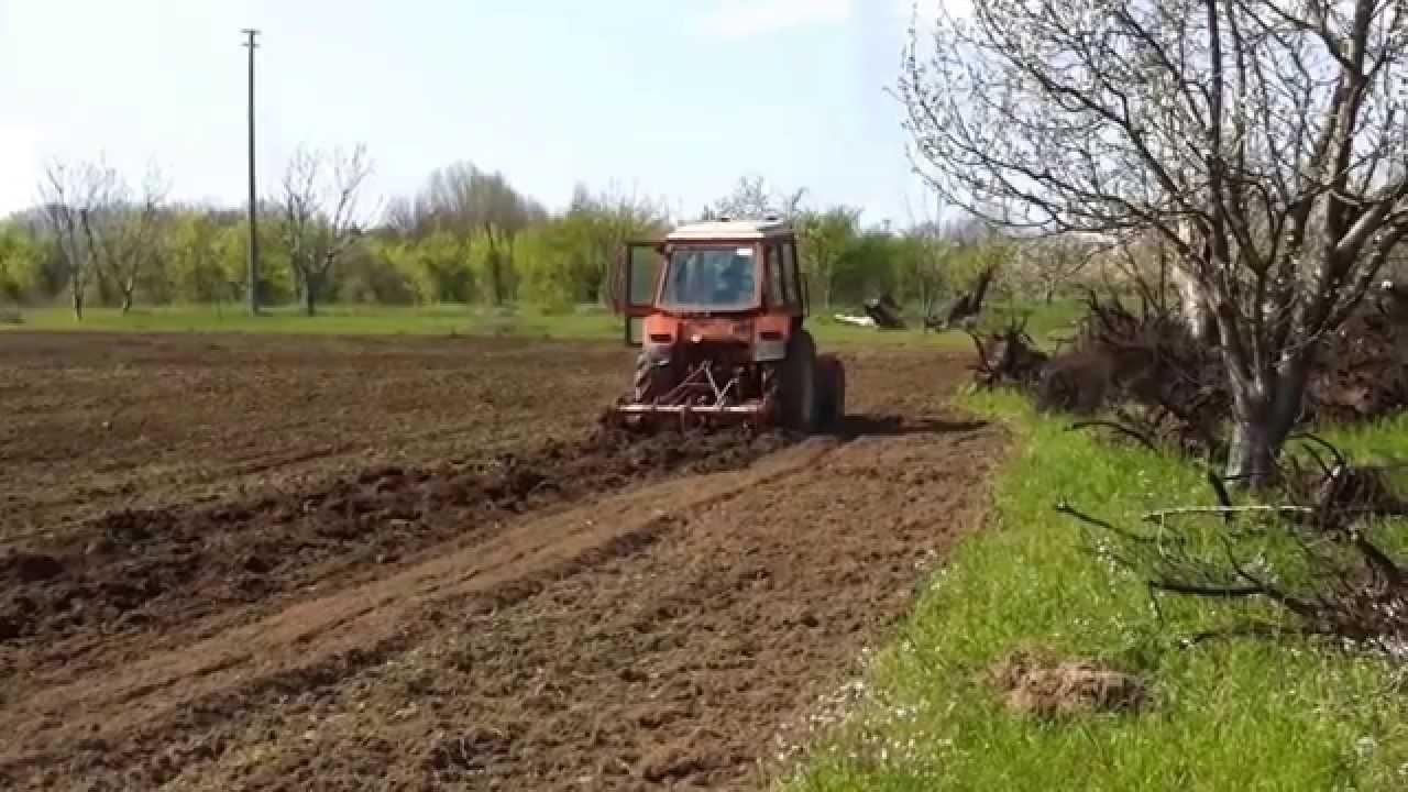 Preparazione letto di semina dei pomodori youtube - Letto di semina ...