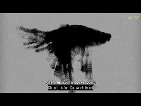 [Vietsub + Lyrics] Birds - Imagine Dragons ft. Elisa