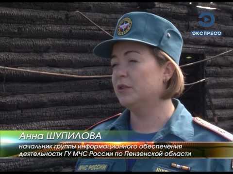 Следователи выясняют причины унесшего три жизни пожара в Сосновке