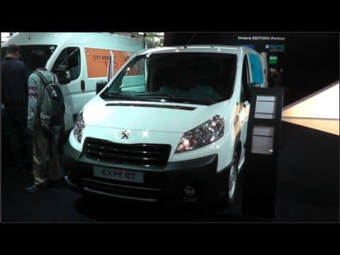 Peugeot Expert Refrigerated Van2015 In Detail Review Walkaround Interior Exterior Youtube