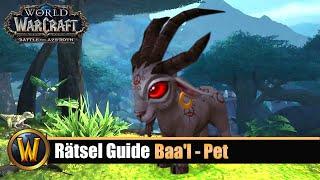 WoW Rätsel Guide: Baa'l - Pet Guide (Ausführlicher Guide)