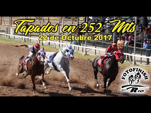 Cuarteta de Tapados Hipodromo de Hermosillo 22 de Octubre 2017