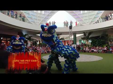 Awesome Dragon Dance, Chinese New Year in Brisbane Australia 2018