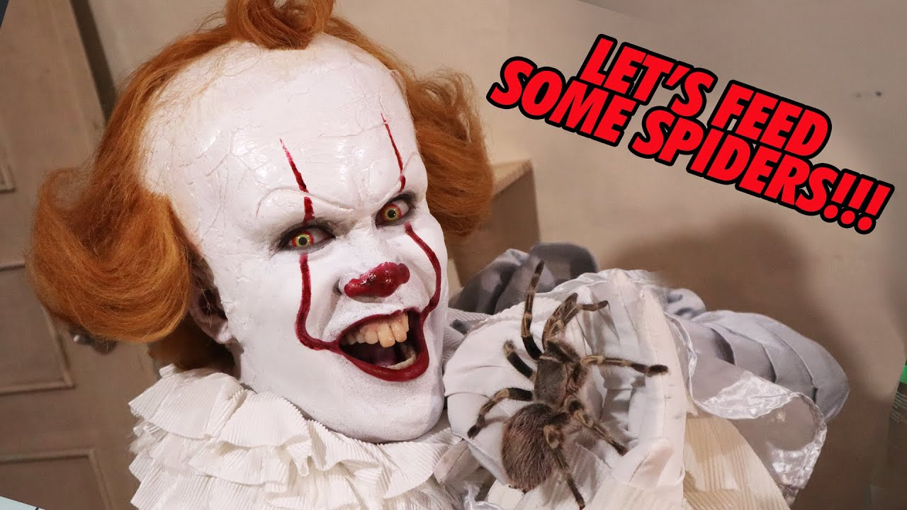 Pennywise feeding some BIG TARANTULAS! Scary large spiders! | Prince De Guzman Transformations