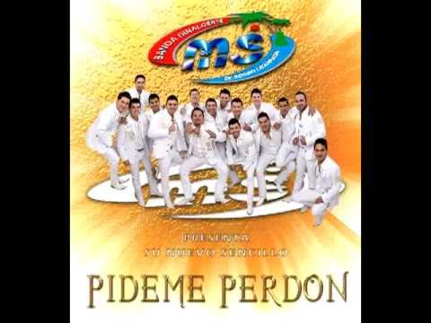 pideme perdon ms