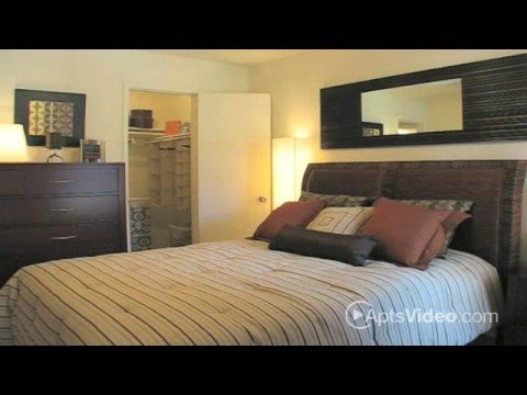 montelano 1 2 bedroom apartments for rent in phoenix az youtube