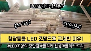 집 전체를 형광등에서 LED등으로 교체한 이유/LED등…
