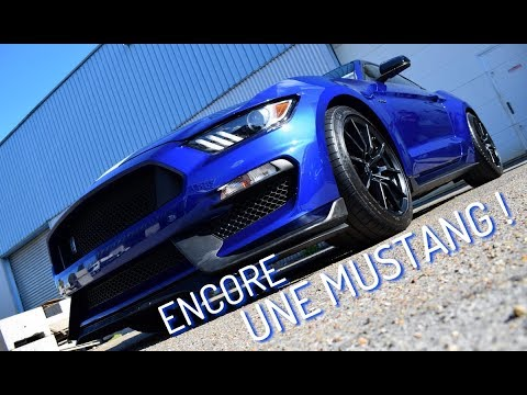 Formation Detailing : Encore Une SHELBY !