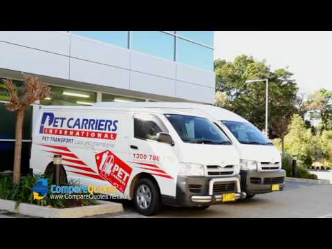 Pet Carriers International | Pet Transport | Moving Pets | Moving Animals | Animal Transport