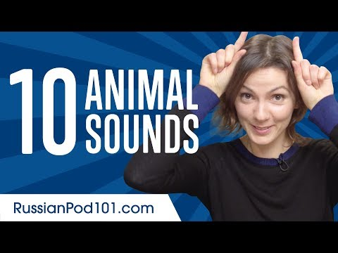 Learn the Top 10 Animal Sounds in Russian