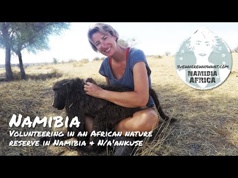 Volunteering in an African nature reserve in Namibia & N/a'ankuse