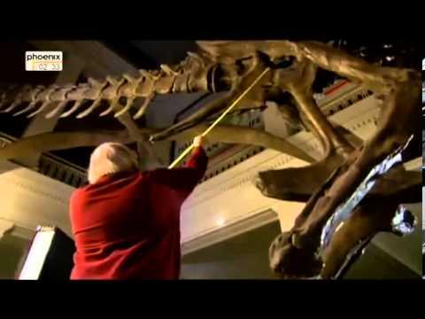 Steppe der Dinos   Spurensuche am Hell Creek Doku über Dinosaurier Teil 2