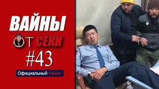 Свежая подборка вайнов SekaVines / Выпуск №43