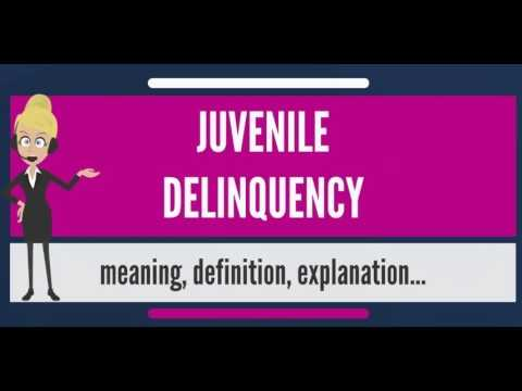 what-is-juvenile-delinquency?-what-does-juvenile-delinquency-mean?-juvenile-delinquency-meaning